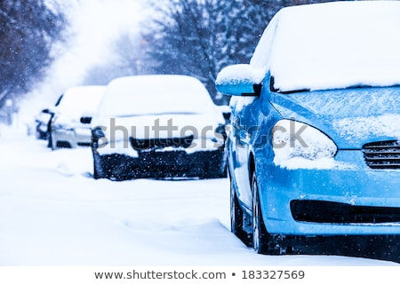 Parked Car in Winter Snowstorm Stock photo © wolterk