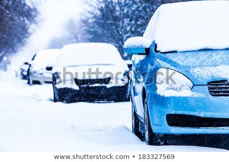 Auto winter sneeuwstorm sneeuw Stockfoto © wolterk