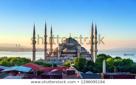 Blauw moskee minaret nacht hemel stad Stockfoto © Kuzeytac