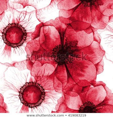 赤 · フローラル · シームレス · 壁紙 · パターン - ストックフォト © zybr78