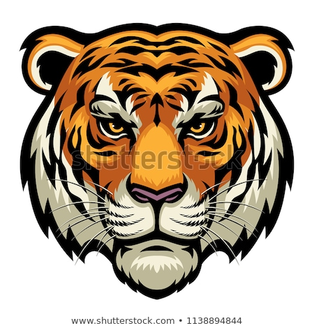 Big cat presa cara vista lateral Foto stock © HunterX
