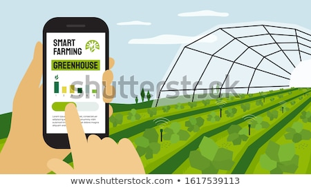 field with greenhouse stock photo © franky242