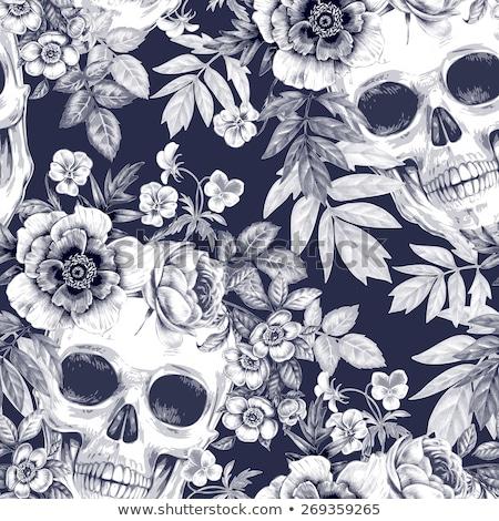 skull with floral ornament vector illustration stock photo © kari-njakabu