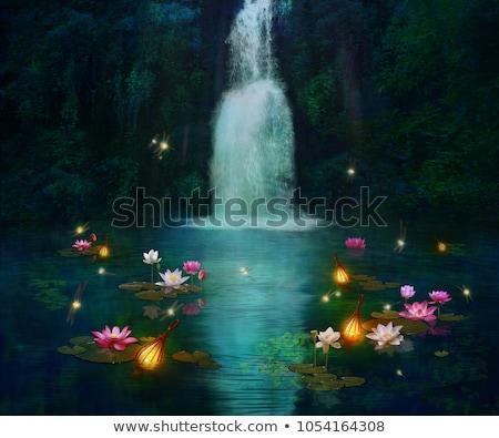 Magisch water lelie bloem steeg Stockfoto © jancaj