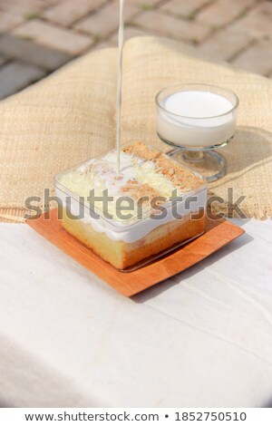 Bakery homemade of  chiffon milk chocolate cake Stock photo © punsayaporn