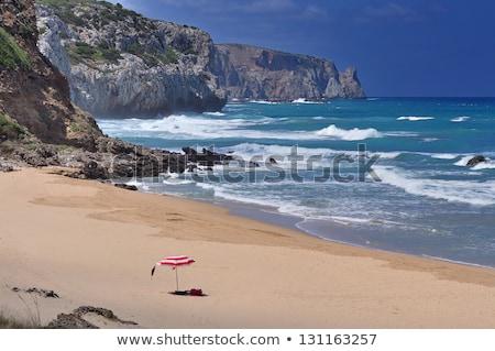 tengerpart · Olaszország · víz · vakáció · panoráma · turista - stock fotó © Dserra1