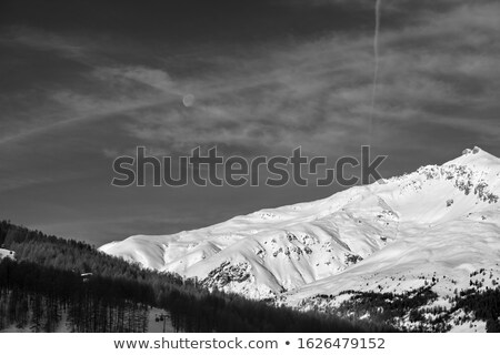 off piste slope at evening stock photo © bsani
