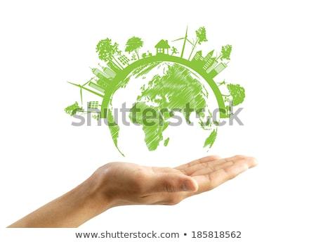 Yeşil eco toprak yalıtılmış beyaz ağaç Stok fotoğraf © rufous