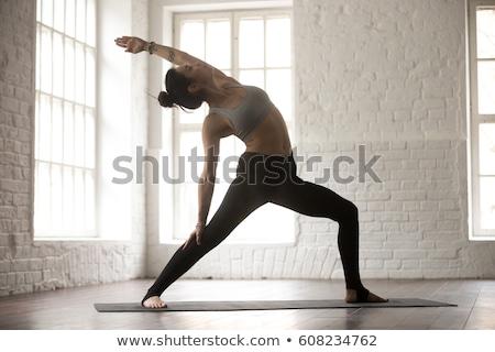 Фитнес-женщины · серый · вид · сзади · женщину · девушки · женщины - Сток-фото © deandrobot