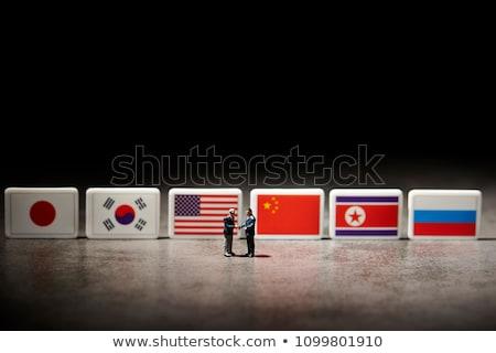 USA and North Korea - Miniature Flags. Stock photo © tashatuvango