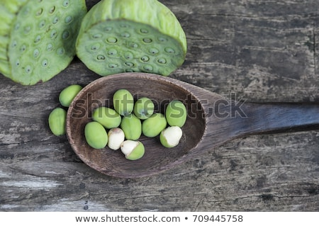 Indian lotus (Nelumbo nucifera) Stock photo © dirkr