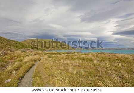 Storm Clouds over the Patagonian Highlands Stock photo © wildnerdpix