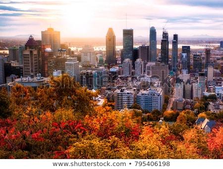 タウン モントリオール カナダ オフィス 住宅の 高層ビル ストックフォト © aladin66
