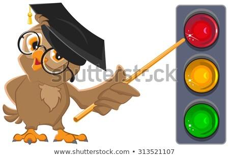 フクロウ 教師 ライト 信号 教育 孤立した ストックフォト © orensila