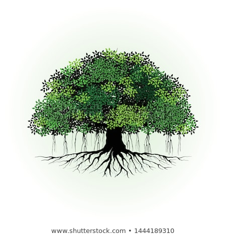 Raíces árbol hojas verdes forestales naturaleza Buda Foto stock © master1305