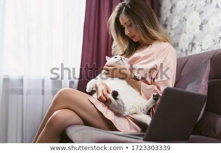 ペット チンチラ キス 所有者 美しい ストックフォト © svetography