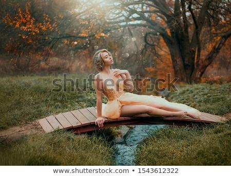 Divat természetes fiatal nő ül fából készült mellkas Stock fotó © majdansky