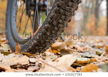 Mountain bike tire closeup stock photo © blasbike