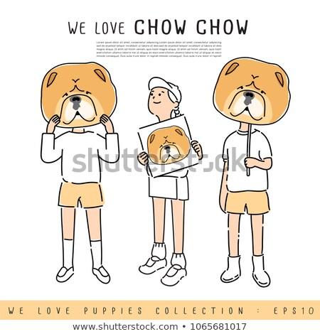 chow chow and boy Stock photo © cynoclub