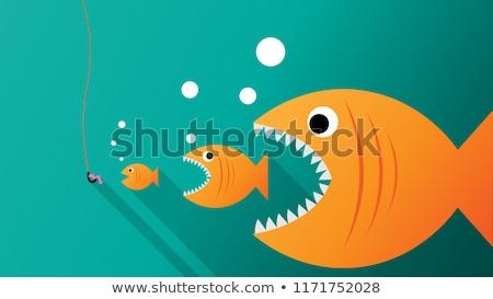 Groot vis witte voedsel achtergrond oceaan Stockfoto © bluering