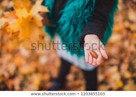 Dziewczynka strony ilustracja dziewczyna uśmiech dziecko Zdjęcia stock © bluering