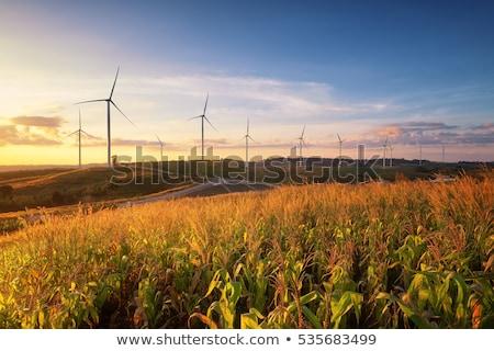 White wind turbine generating electricity. Stock photo © RAStudio