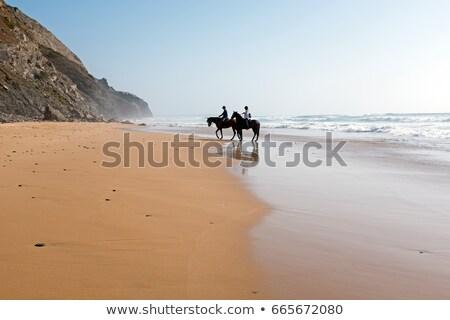 Stockfoto: Paard · vrouw · zee · hengst · paardrijden · water