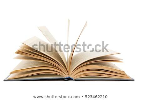nyitott · könyv · üres · oldalak · izolált · fehér · papír - stock fotó © bluering