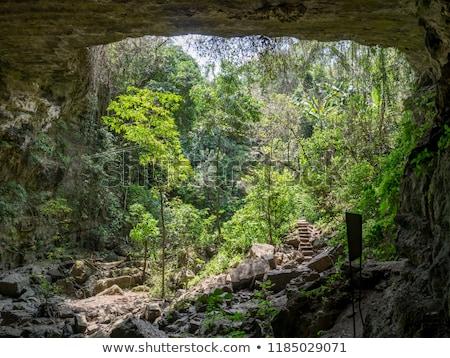 Tájkép Colombia drámai völgy dombok erdő Stock fotó © jkraft5