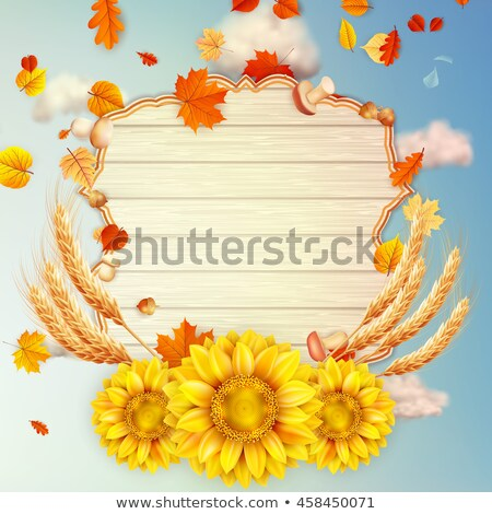 Delicate autumn sun with glare. EPS 10 Stock photo © beholdereye