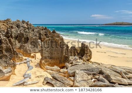 Elképesztő Madagaszkár nagy természetes part egy Stock fotó © artush