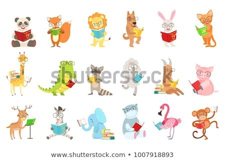 cute zebra cartoon reading book Stock photo © jawa123