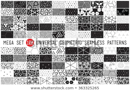 set of universal different geometric seamless patterns monochro stock photo © vanzyst