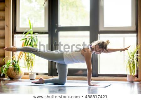 gimnasio · pilates · mujer · yoga · pierna · deporte - foto stock © deandrobot