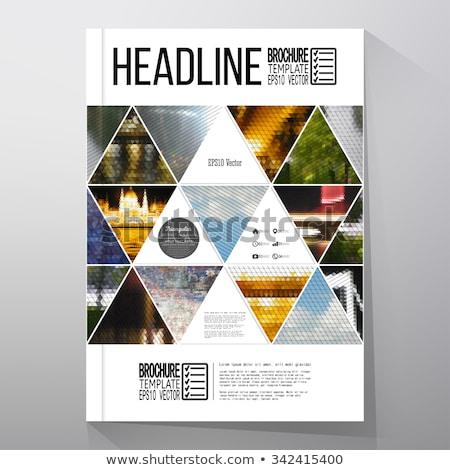 colorful geometric polygon brochure flyer template Stock photo © SArts