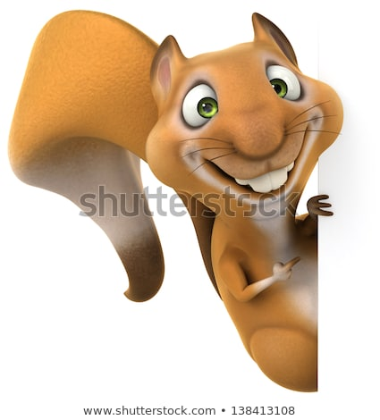 squirrel cartoon character Stock photo © izakowski