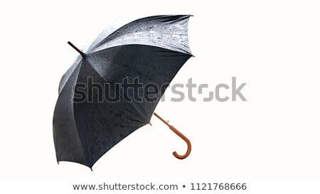 Wet umbrella Stock photo © tilo