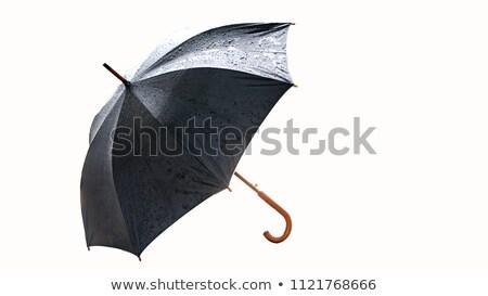 parapluie · pluie · illustration · printemps · fond · signe - photo stock © tilo