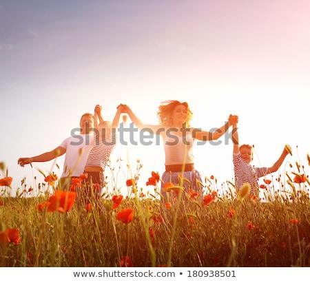 Alan tok çiçekli gelincikler yaprakları mavi gökyüzü Stok fotoğraf © Klinker