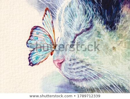 Akwarela kotek odizolowany biały wektora farby Zdjęcia stock © balasoiu