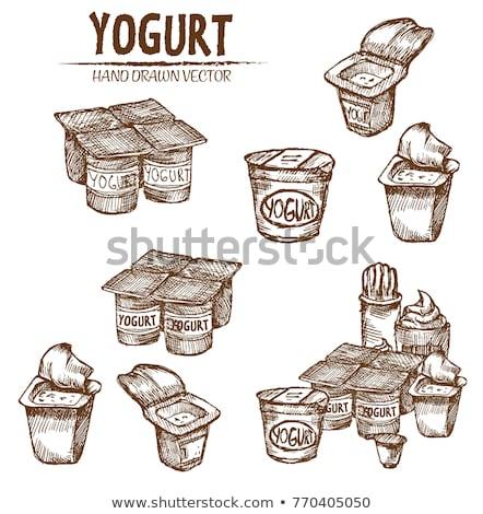 Digital vector detailed line art packed yogurt Stock photo © frimufilms