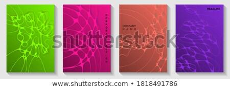 Linha projeto bandeira financiar computador rede Foto stock © Genestro