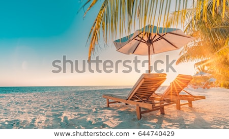 plage · tropicale · Maldives · coco · palmiers · suspendu · mer - photo stock © anna_om