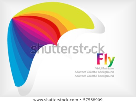 Abstract Colorful Rainbow With Kite Template Vector Illustration