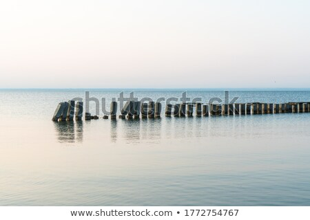 Old pier on pond Stock photo © Givaga