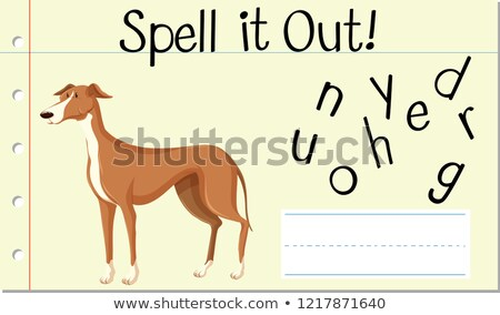 Spell English word greyhound Stock photo © bluering
