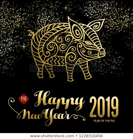 Chinese New Year of the pig card on firework sky Stock photo © cienpies