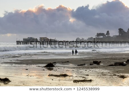 Capitola Beach and wharf in stormy clouds sunset and surfers silhouette. Stock photo © yhelfman