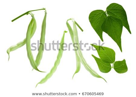 feijões · isolado · branco · verde · saudável · feijão - foto stock © maxsol7