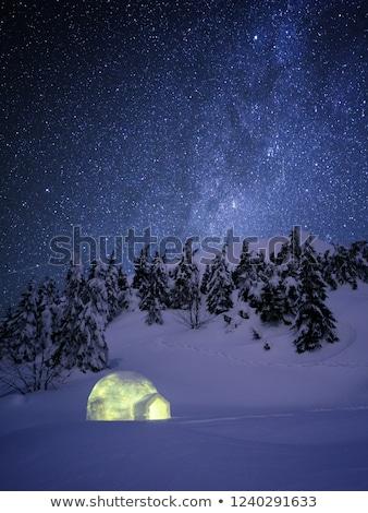 Winter wonderland scene with igloo snow  Stock photo © Kotenko